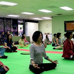 Meditation In Walnut Center